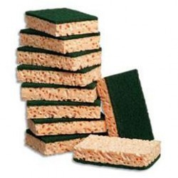 10 Eponges végétales avec tampon vert 110 x 70 mm